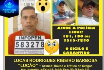 """VOCÊ ESTÁ SENDO PROCURADO!!!! Foragido da justiça """"LUCÃO""""  FARAGIU DO """"BENEFICIO"""" CONDICIONAL!"""
