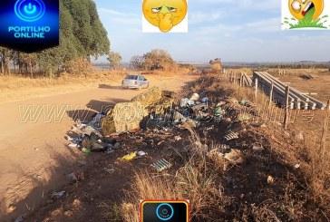 Lixão na entrada da estrada vicinal sentido Tião leiteiro polui o meio ambiente.