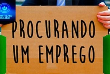 Procuro emprego. Gustavo Lucas Fereira Silva