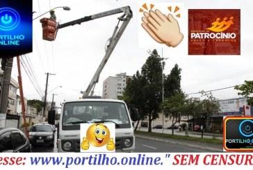 9VIDADE MUITO BOA!!!! Administração está comprando caminhão adapitado para arrumar a troca de lâmpadas em vias publica.