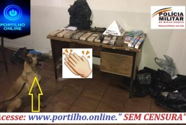 """👉👏🤜👊🤛🚔🚨👍 """" Mesa farta""""!!! Competencia!!! Vontade!!! EFICIÊNCIA!!!Tráfico no Bairro Santo Antônio"""