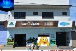 👉👍👏🏇🐴🦓🐎CHEGOU A PATROCÍNIO!!!!! VIDA EQUINA!!! Acaba de inaugurar em Patrocínio a loja vida equina