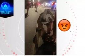 👉😠😱🤔🚓🚨👊😵Vídeo mostra agressão de PM contra mulher durante abordagem no Paraná; ASSISTA
